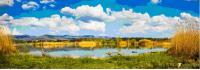 oasi Gabbianello